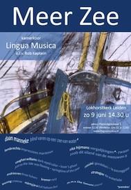 poster-meer-zee-kleiner-2013-
